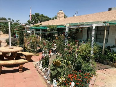 Lake Los Angeles Single Family Home For Sale: 17133 Schollview Avenue