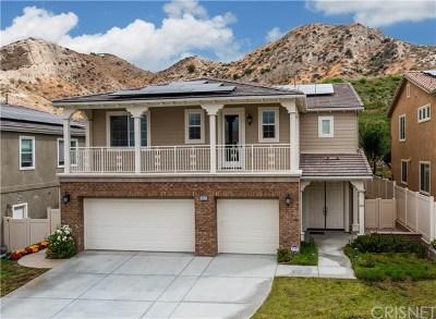 Canyon Country Single Family Home For Sale: 15622 Nahin Lane
