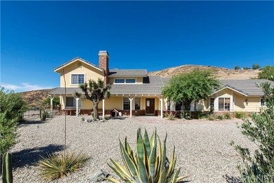 Agua Dulce Single Family Home For Sale: 13602 Sego Road