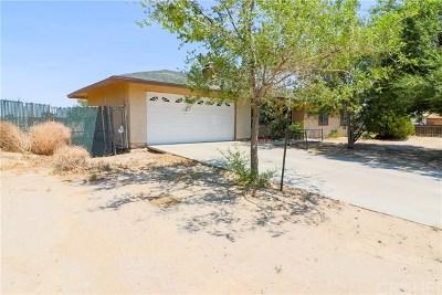 Lake Los Angeles Single Family Home For Sale: 41348 154th Street E