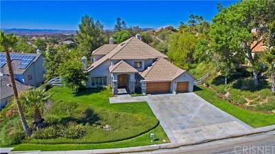 Acton, Canyon Country, Castaic, Newhall, Saugus, Santa Clarita, Stevenson Ranch, Valencia, Agua Dulce Single Family Home For Sale: 15531 Live Oak Springs Canyon Road