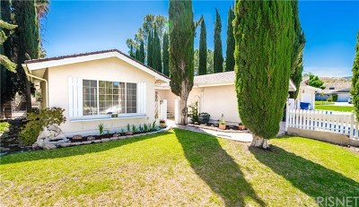Acton, Canyon Country, Saugus, Santa Clarita, Castaic, Stevenson Ranch, Newhall, Valencia, Agua Dulce Single Family Home For Sale: 26110 Abdale Street