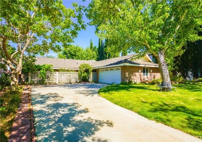 Palmdale Single Family Home For Sale: 39164 11th Street W