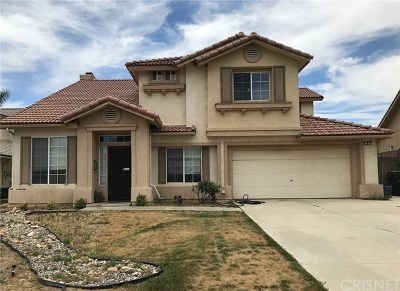Castaic Single Family Home For Sale: 28408 Oak Valley Road