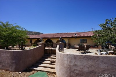 Acton Single Family Home For Sale: 1551 Twin Butte Road