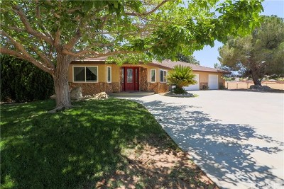 Palmdale Single Family Home For Sale: 40124 30th Street W