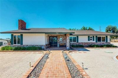 Palmdale Single Family Home For Sale: 714 Lisa Street
