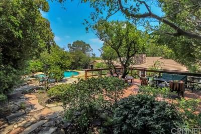 Chatsworth Single Family Home For Sale: 9801 Andora Avenue