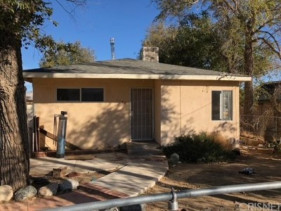 Palmdale Single Family Home For Sale: 1141 Avenue R
