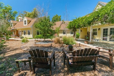 Newhall Single Family Home For Sale: 25757 Pacy Street