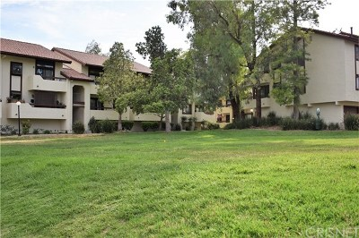 Santa Clarita, Newhall, Saugus, Valencia, Canyon Country Condo/Townhouse For Sale: 18125 American Beauty Drive #176