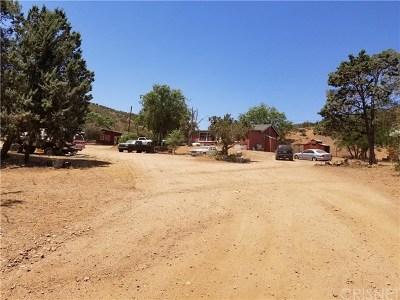 Acton Single Family Home For Sale: 5138 Escondido Canyon Road
