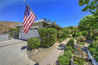 Shadow Hills Single Family Home For Sale: 9703 Sombra Terrace Street