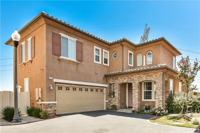 Newhall Single Family Home For Sale: 27192 Remer Court