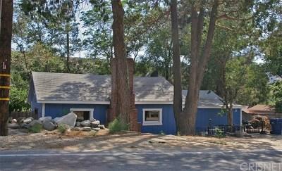 Lake Hughes Single Family Home For Sale: 17712 Elizabeth Lake Road