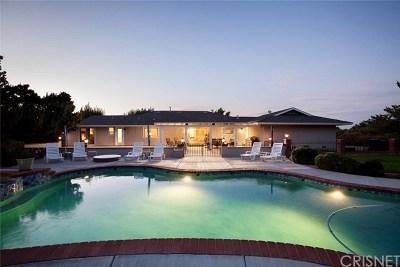Lancaster, Palmdale, Quartz Hill Single Family Home For Sale: 716 W Avenue R12