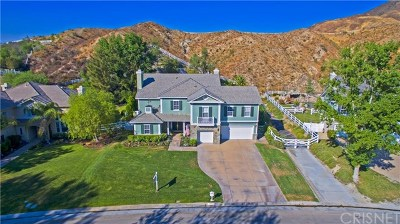Canyon Country Single Family Home Active Under Contract: 26860 Canyon End Road