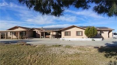 Lancaster, Palmdale Single Family Home For Sale: 1539 W Avenue L12