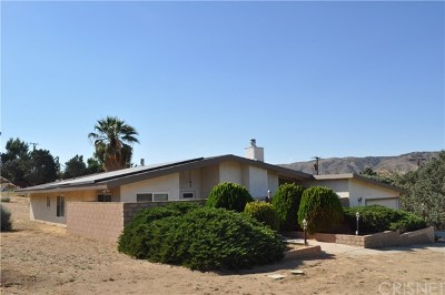 Leona Valley Single Family Home For Sale: 39753 87th Street W