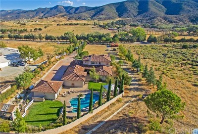 Leona Valley Single Family Home For Sale: 11043 Elizabeth Lake Road