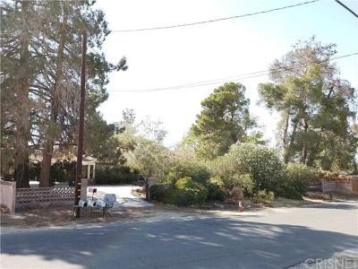 Littlerock Single Family Home For Sale: 35349 80th Street E