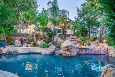 Agoura Hills Single Family Home For Sale: 29389 Lake Vista Drive