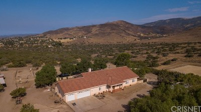 Agua Dulce Single Family Home For Sale: 35710 Tierra Dulce Road