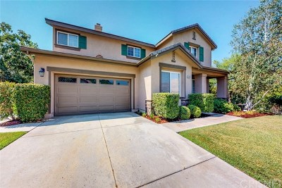 Canyon Country Single Family Home For Sale: 14246 Wrangell Lane