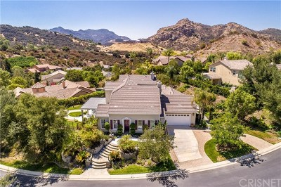 Westlake Village Single Family Home For Sale: 1364 Caitlyn Circle