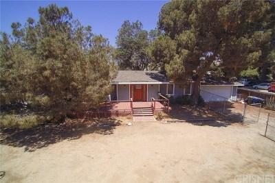 Sunland Single Family Home For Sale: 11091 McBroom Street