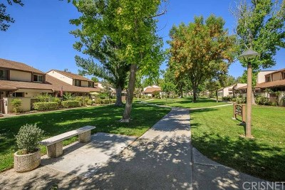 Valencia Condo/Townhouse For Sale: 24686 Golfview Drive
