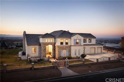 Palmdale Single Family Home For Sale: 327 Lakeview Drive