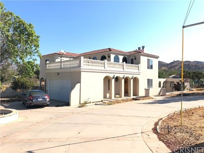 Agua Dulce Single Family Home For Sale: 10535 Escondido Canyon Road