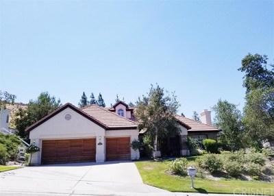 Acton, Canyon Country, Castaic, Newhall, Saugus, Stevenson Ranch, Valencia, Agua Dulce, Santa Clarita Single Family Home For Sale: 15412 Live Oak Springs Canyon Road
