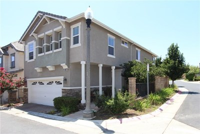 Acton, Canyon Country, Castaic, Newhall, Saugus, Santa Clarita, Stevenson Ranch, Valencia, Agua Dulce Single Family Home For Sale: 29365 Dakota Drive