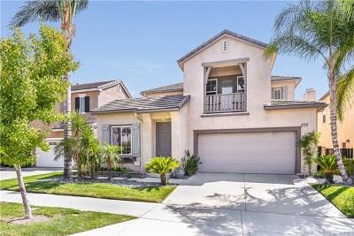 Acton, Canyon Country, Castaic, Newhall, Saugus, Santa Clarita, Stevenson Ranch, Valencia, Agua Dulce Single Family Home For Sale: 24318 Las Palmas Street