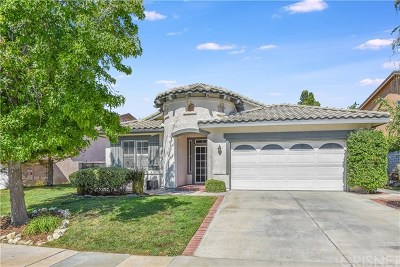 Acton, Canyon Country, Saugus, Santa Clarita, Castaic, Stevenson Ranch, Newhall, Valencia, Agua Dulce Single Family Home For Sale: 25711 Barnett Lane