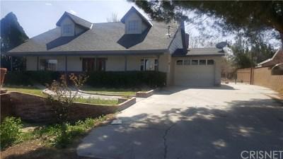 Quartz Hill Single Family Home Active Under Contract: 4044 W Avenue L2