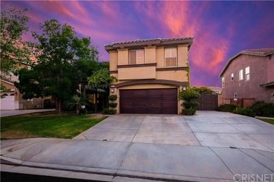 Lancaster Single Family Home For Sale: 42129 Ash Court