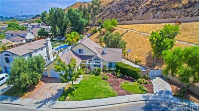 Castaic Single Family Home For Sale: 27948 Stageline Road