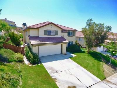 Saugus Single Family Home For Sale: 28652 Deer Springs Drive
