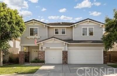 Castaic Single Family Home For Sale: 27648 Muir Grove Way