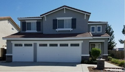 Castaic Single Family Home For Sale: 30418 Barcelona Road