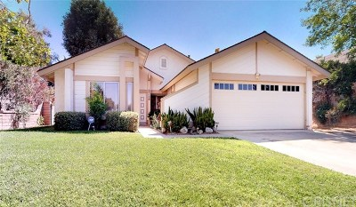 Valencia Single Family Home For Sale: 23128 Calvello Drive