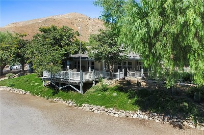 Saugus Single Family Home For Sale: 18171 Lost Creek Road