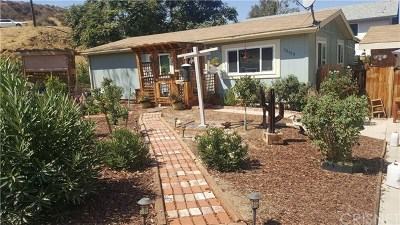 Castaic Single Family Home For Sale: 28959 Windsor Road