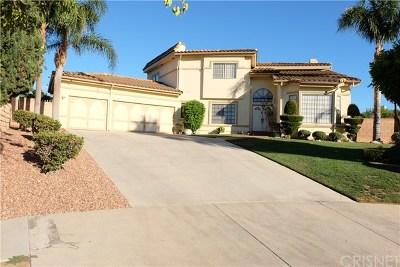 Northridge Single Family Home For Sale: 17024 Septo Street