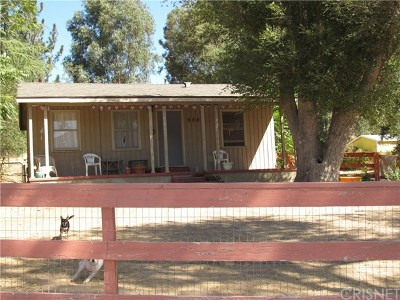Leona Valley Single Family Home For Sale: 8805 Elizabeth Lake Road