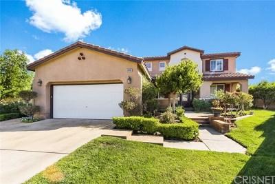 Valencia Single Family Home For Sale: 24305 Via La Casa