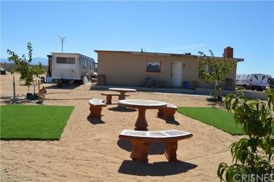 Palmdale Single Family Home For Sale: 23632 E Avenue M